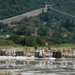 Sea salt harvest in Ston