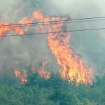 The fire in Župa Dubrovačka