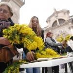 Mimoza day - Dubrovnik Against Cervical Cancer