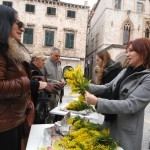 Mimoza day - Dubrovnik Against Cervical Cancer