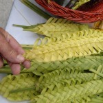 Palm Sunday In Dubrovnik