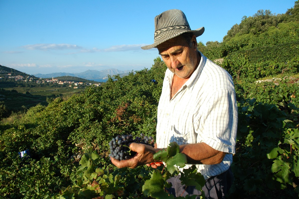 Boston Globe: Peljesac-Croatia's Napa Valley - Just Dubrovnik
