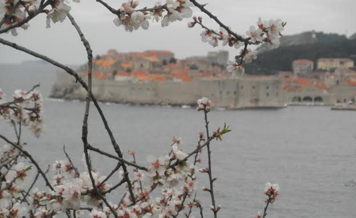 Dubrovnik in top ten spring destinations