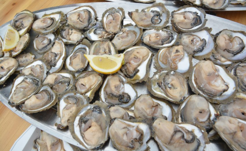 Ston Oyster Day