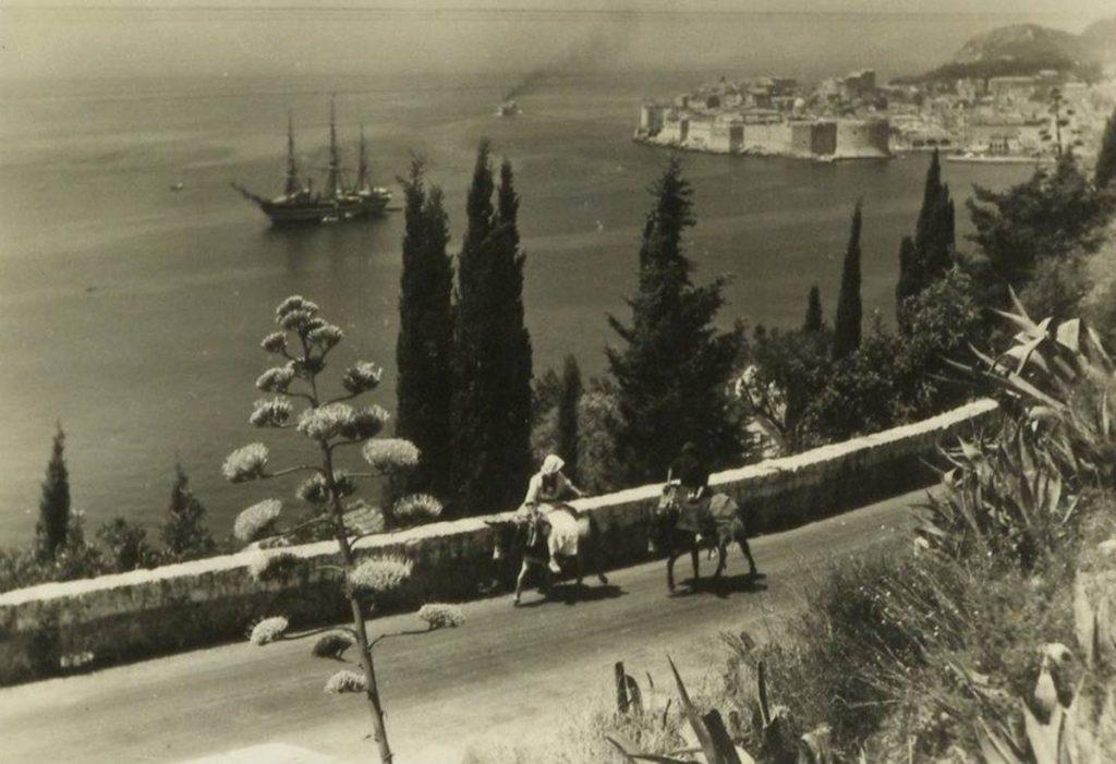 Amerigo Vespucci in 1950 (2)