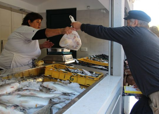 fish-market-in-ston-18