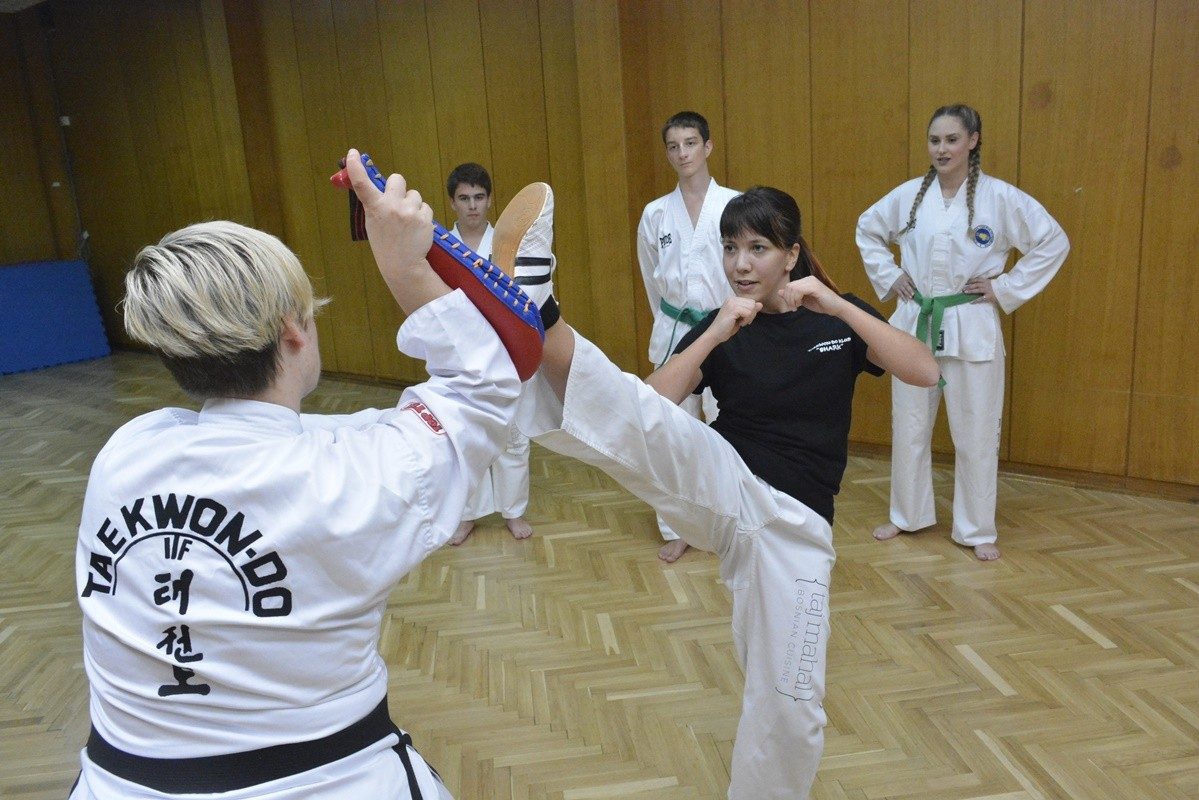 taekwon-do-shark-3